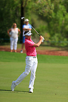 Ian Poulter (ENG) on the 16th fairway during the 2nd round of the DP World Tour Championship, Jumeirah Golf Estates, Dubai, United Arab Emirates. 16/11/2018<br /> Picture: Golffile | Fran Caffrey<br /> <br /> <br /> All photo usage must carry mandatory copyright credit (© Golffile | Fran Caffrey)
