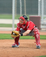 Devon Mesoraco. Cincinnati Reds spring training workouts at the Reds new complex, Goodyear, AZ - 02/19/2010.Photo by:  Bill Mitchell/Four Seam Images.