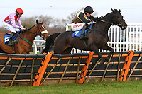 Everlanes ridden by Nick Schofield jumps the last in The Racing TV Profits returned to Racing'National Hunt' Novices' Hurdle during Horse Racing at Wincanton Racecourse on 5th December 2019