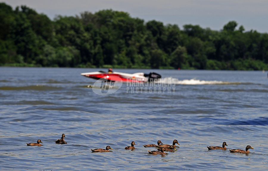 Jul. 18, 2009; Augusta, GA, USA; Ducks swim on the water as an IHBA drag boat racer heads to the starting line during qualifying for the Augusta Southern Nationals on the Savannah River. Mandatory Credit: Mark J. Rebilas-