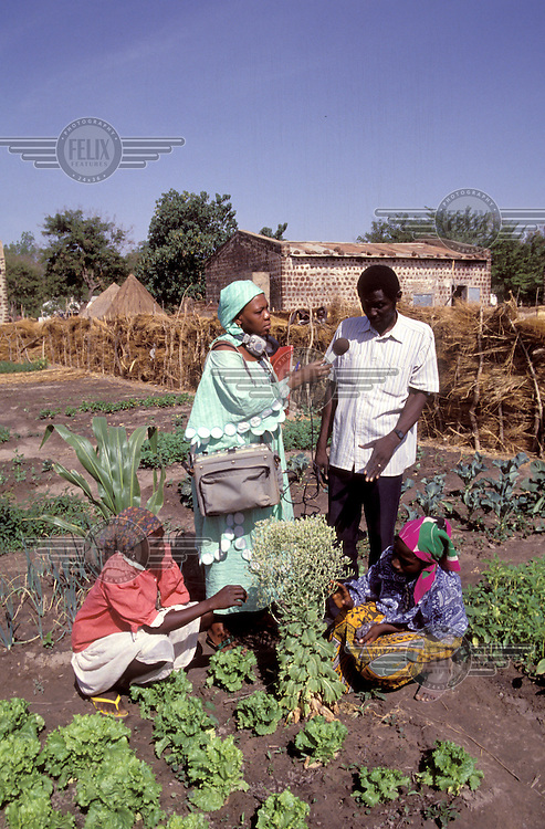 ©Giacomo Pirozzi/Panos Pictures..Chad. Community radio: interviewing subsistence farmers.