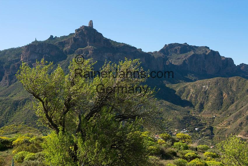 Spain, Gran Canaria, Roque Bentayga and inland landscape   Spanien, Gran Canaria, im Landesinnern, im Hintergrund der Roque Bentaiga