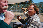 LAKE HUGHES - MAY 21: Paul and Colette Pondella have 10 wolfdogs in their pack at the Shadowland Foundation. Visitor John Westbrook prepares to let one of the wolfdogs take a treat from his lips. (Photo by Kendrick Brinson)