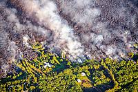 Fissure 8 eruptions and lava flows, Kapoho, Puna, Big Island, Hawaii, USA