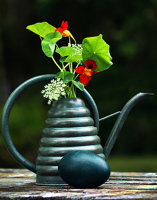 A watering can used as a vase for flowers is arranged with an ostrich egg on an old picnic table to create this still life at Hackberry Hammock.