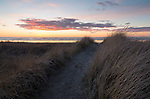 Oregon, northwest Oregon, Seaside. A coastal trail to the ceach through tall grasses and over dunes at sunset in March.