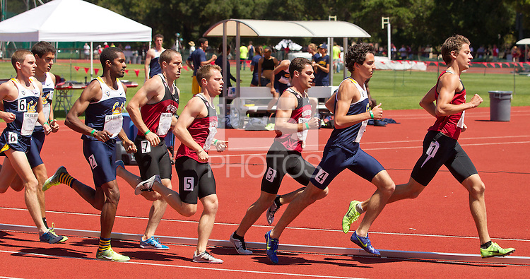 Stanford, CA., April 20, 2013,--Stanford's men's 1,500 race at the 119 Big Meet at Cobb Track and Angell Field at Stanford University.