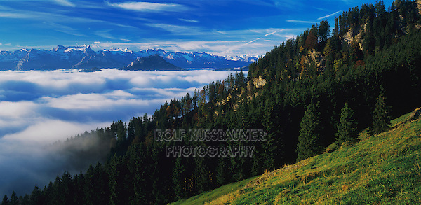 Swiss alps seen from Wildspitz peak, Unteraegeri, Zug, Switzerland