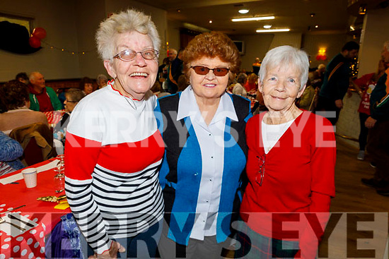 Christina Mulligan, Marie Murphy and Philomena Duggan enjoying the Boherbee/John Mitchels Active retired Christmas Party in John Mitchels on Saturday.