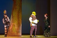 S&Atilde;O PAULO,SP, 09-09-2013, TEATRO BRADESCO -PASSAGEM DE CENA - SHREK<br /> <br /> O ator Rodrigo Sant'ann (Burro), Giulia Nadruz (Fiona), Diego Luri (Shrek) na passagem de cena realizada durante a coletiva de imprensa no Teatro Bradesco em S&atilde;o Paulo, nesta segunda-feira dia 09 de setembro de 2013 (Foto: Flavio Hopp / Brazil Photo Press).
