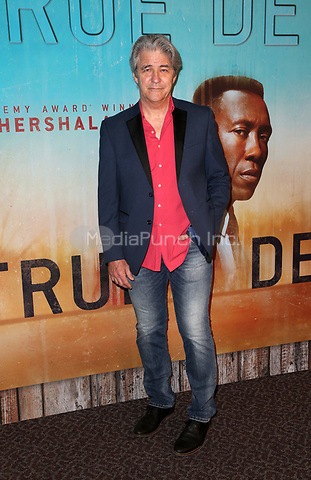 LOS ANGELES, CA - JANUARY 10: Gareth Williams, at the Los Angeles Premiere of HBO's True Detective Season 3 at the Directors Guild Of America in Los Angeles, California on January 10, 2019. Credit: Faye Sadou/MediaPunch