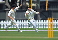 Wellington's Logan Van Beek catches Canterbury's Chad Bowe during day four of the Plunket Shield cricket match between the Wellington Firebirds and Canterbury at Basin Reserve in Wellington, New Zealand on Friday, 1 November 2019. Photo: Dave Lintott / lintottphoto.co.nz