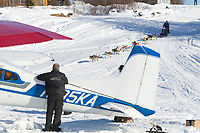 Volunteer Iditarod Air Force pilot Greg Fischer watches Brunce Linton and team run down the Innoko river bank frm Shageluk prior to his departure during the 2011 Iditarod race.
