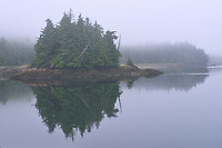 Looking towards Kaien Island. Fog at dawn., , British Columbia, Canada