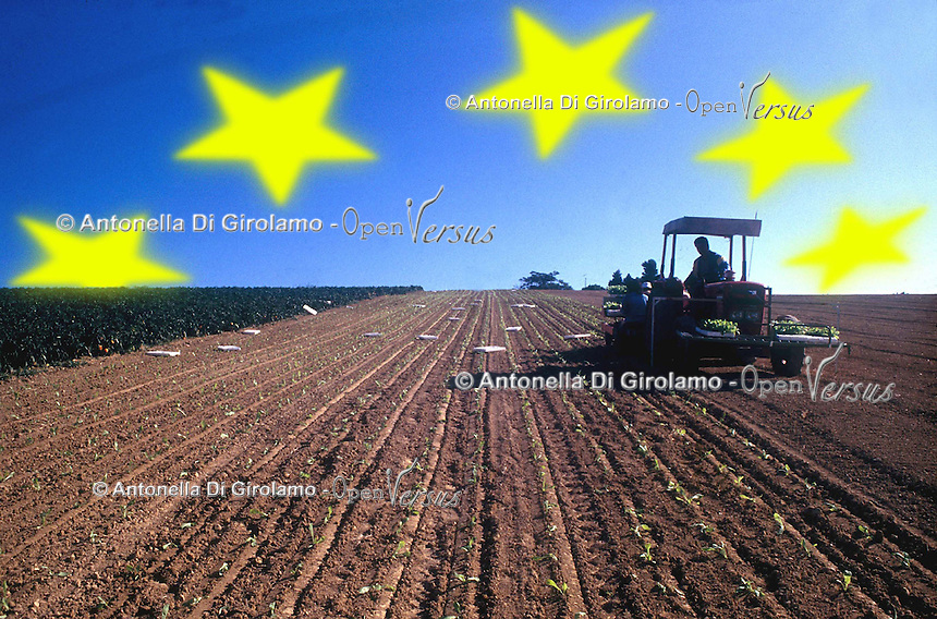 PAC. Politica agricola comune. CAP. The Common Agricultural Policy ...