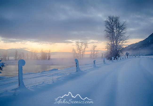 Idaho, North, Boundary County, Bonners Ferry. A snow scene with frost covered trees along the Kootenai River with mist in morning in winter.