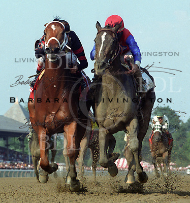 Carson Hollow, left, and You.  2002 Test Stakes. Saratoga Race Course, Saratoga Racetrack, beautiful horse racing, Thoroughbred racing, horse, equine, racehorse, morning mood