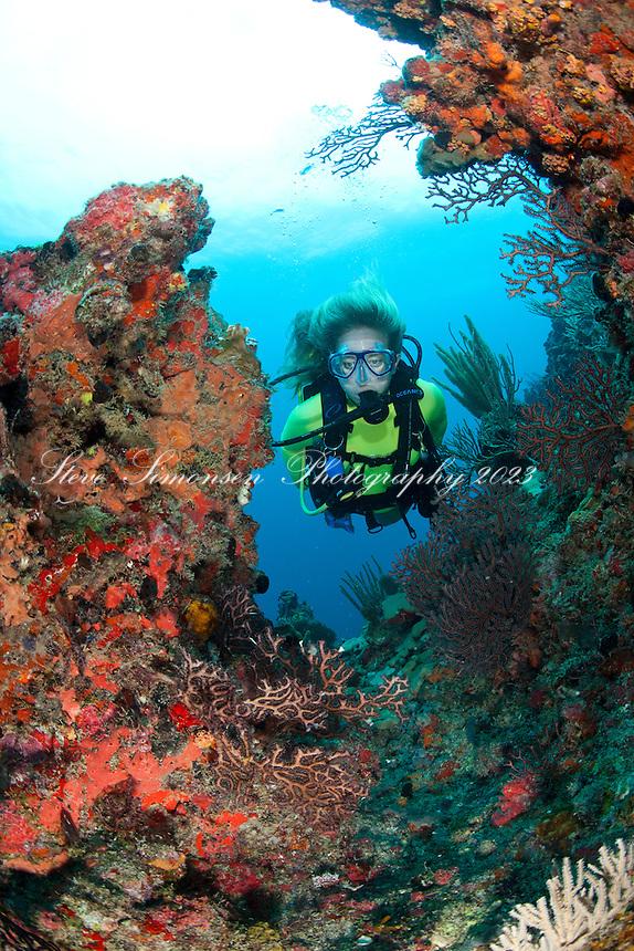 Scuba divers<br /> Congo Cay<br /> U.S. Virgin Islands