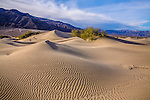 Rippled sand dunes and mountains in mid morning light at Stovepipe Wells, Death Valley National Park, California, USA
