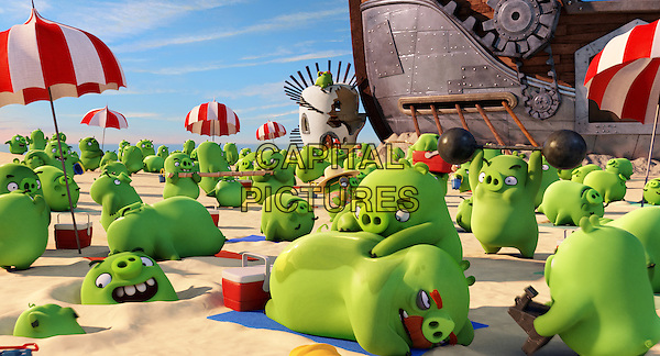 The Angry Birds Movie (2016) <br /> The pigs enjoying the beach<br /> *Filmstill - Editorial Use Only*<br /> CAP/KFS<br /> Image supplied by Capital Pictures