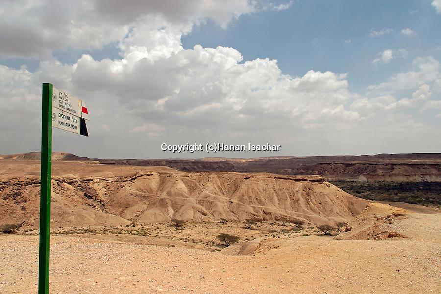 Israel, the Negev desert. A view of Wadi Akrabim and Wadi Zin
