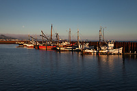 Commercial fishing boats, ships, Port of Astoria, Oregon, OR, America, USA.