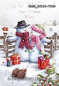 John, CHRISTMAS SANTA, SNOWMAN, WEIHNACHTSMÄNNER, SCHNEEMÄNNER, PAPÁ NOEL, MUÑECOS DE NIEVE, paintings+++++,GBHSSXC50-799B,#X#