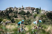 peloton  riding along Faucon<br /> <br /> Stage 17: Pont du Gard to Gap (200km)<br /> 106th Tour de France 2019 (2.UWT)<br /> <br /> ©kramon