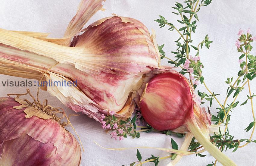 Garlic (Allium sativum) and thyme.