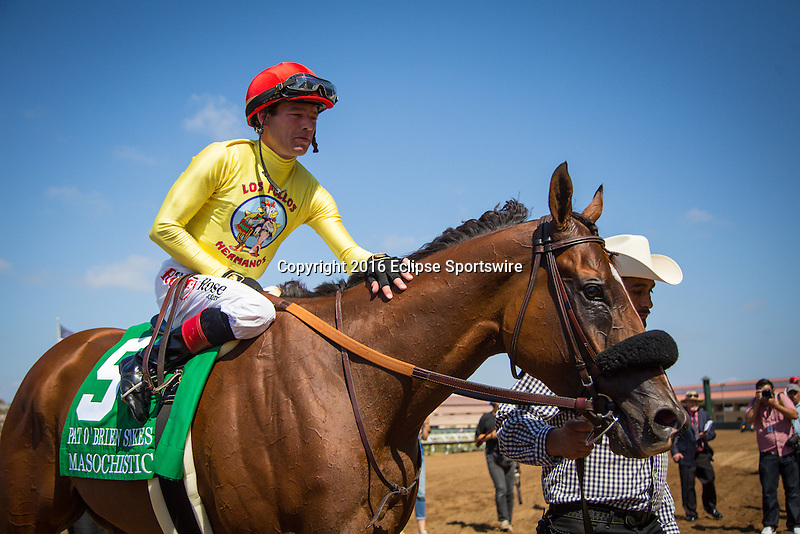 "DEL MAR CA - AUGUST 27: Masochistic #5, ridden by Tyler Baze win the Grade II ""Win and You're In"" Pat O'Brien Stakes at Del Mar on August 27, 2016 in Del Mar, California. (Photo by Zoe Metz/Eclipse Sportswire/Getty Images)"