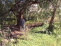 Querétaro, Qro. 7 de enero de 2016.- Un hombre de 50 años decidió terminar con su vida colgándose de un árbol en el parque Venustiano Carranza en bulevar de las Américas. La familia desconoce el motivo por el cual este hombre decidió terminar con su existencia.