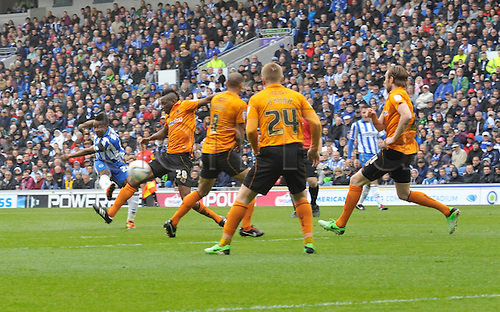 04.05.2013 Brighton, England. Brighton's Kazenga LuaLua scores during the Championship game between Brighton & Hove Albion and Wolverhampton Wanderers from the Falmer  Amex Stadium.
