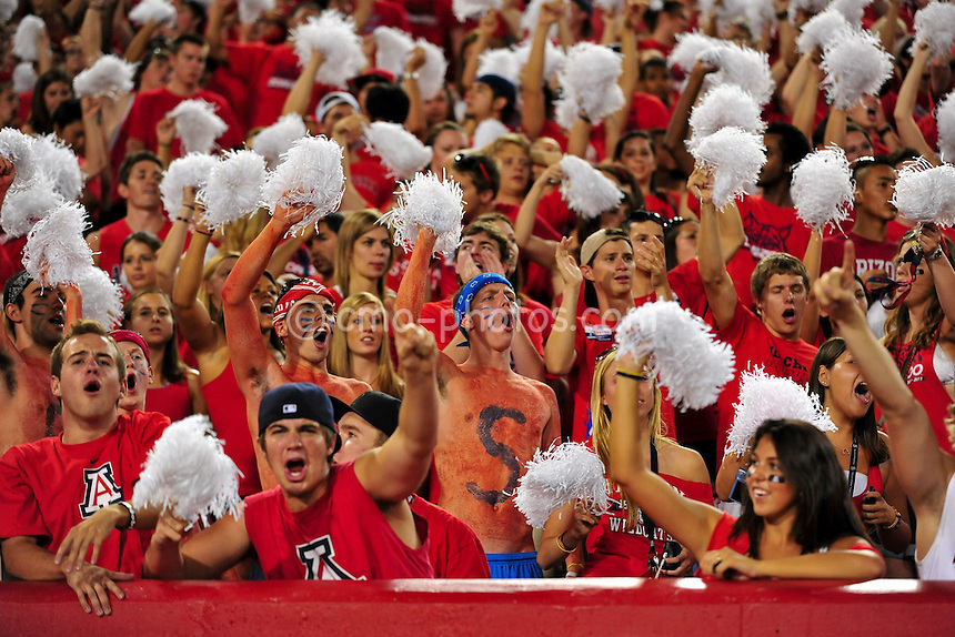 Sept 18, 2010; Tucson, AZ, USA; Arizona Wildcats fans cheer on their team's defense late in the 4th quarter of a game against the Iowa Hawkeyes at Arizona Stadium.  Arizona won the game 34-27.