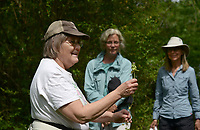 NWA Democrat-Gazette/BEN GOFF @NWABENGOFF<br />