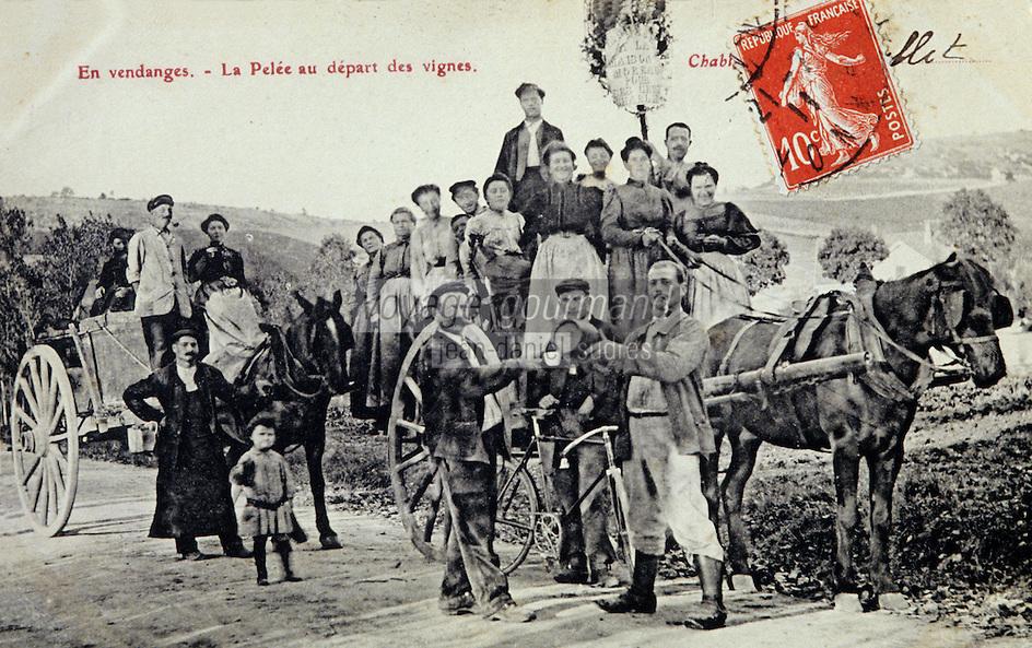 Europe/France/89/Yonne/AOC Chablis: Carte postale ancienne départ pour les vendanges