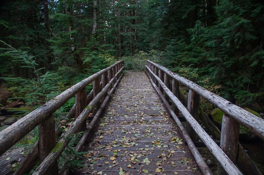 Wooden Footbridge Over Marten Creek, Taylor River Road, Mt. Baker Snoqualmie National Forest, Washington, US