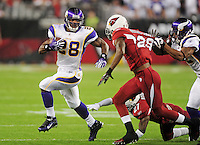 Dec 6, 2009; Glendale, AZ, USA; Minnesota Vikings running back (28) Adrian Peterson runs the ball in the first quarter against the Arizona Cardinals at University of Phoenix Stadium. Mandatory Credit: Mark J. Rebilas-