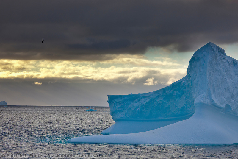 Morning light and clouds over icebergs near Coronation Island, South Orkney Islands, Southern Ocean.