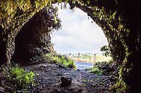 Looking out of Cave #3 along Old Mamalahoa Hwy., Big Island.
