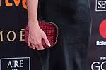 Handbag Elena Furiase attends red carpet of Goya Cinema Awards 2018 at Madrid Marriott Auditorium in Madrid , Spain. February 03, 2018. (ALTERPHOTOS/Borja B.Hojas)