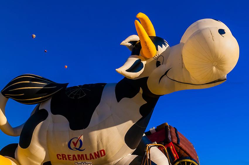 Airabelle The Flying Cow (a special shapes balloon from the Creamland Dairy), Albuquerque International Balloon Fiesta, Albuquerque, New Mexico USA.