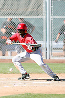 Justin Reed, Cincinnati Reds 2010 minor league spring training..Photo by:  Bill Mitchell/Four Seam Images.