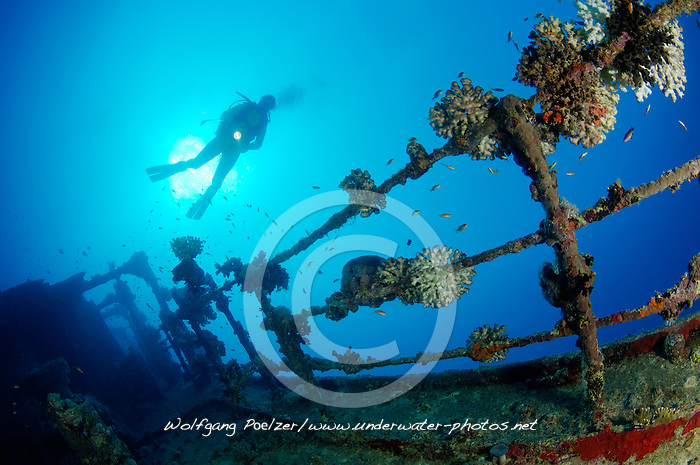 Schiffswrack SS Turbo, Taucher am Schiffs  Wrack, Ein Tanker, Shipwreck SS Turbo, Tanker, Ship wreck and scuba diver, Rotes Meer, Ägypten, Red Sea, Egypt, Ras Banas