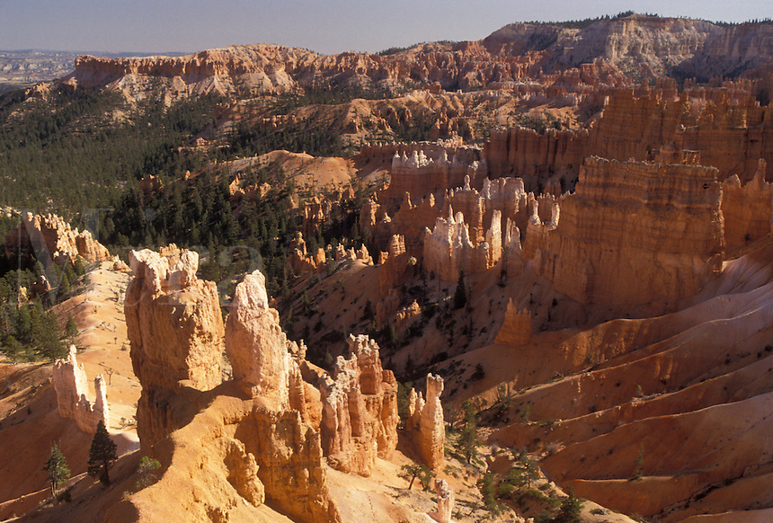 "AJ3836, Bryce Canyon, Bryce Canyon National Park, Paunsaugunt Plateau, Utah, Spectacular view of jagged colorful rock formations and pillars called """"hoodoos"""" in the canyon of Bryce Canyon Nat'l Park in the state of Utah."