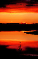 731000269 low angled light at sunset turns the sky and whitefish lake below brilliant red and yellow in the northwest territories of canada