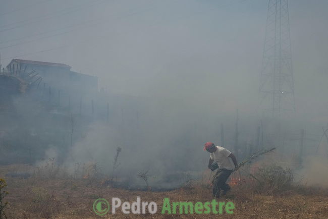 A man walk through smoke billowing from a field at the site of a wildfire in Tres Cantos, north of Madrid on August 22, 2013.. © Pedro ARMESTRE.