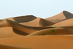 Tenger desert at Ningxia province in China