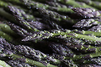 Ayala Farms- Sunnyside, Washington, Asparagus Harvest