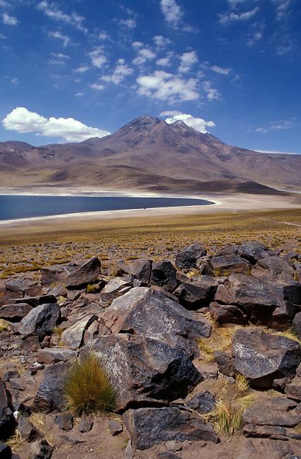Desert de  l'Atacama. Lagune Miscanti.