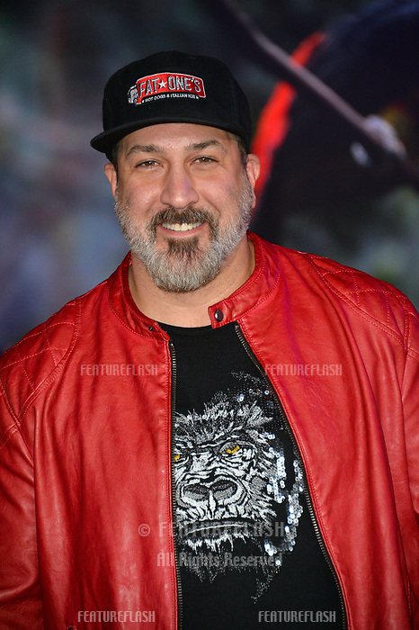 """Joey Fatone of 'NSync at the Los Angeles premiere of """"Jumanji: Welcome To the Jungle"""" at the TCL Chinese Theatre, Hollywood, USA 11 Dec. 2017<br /> Picture: Paul Smith/Featureflash/SilverHub 0208 004 5359 sales@silverhubmedia.com"""